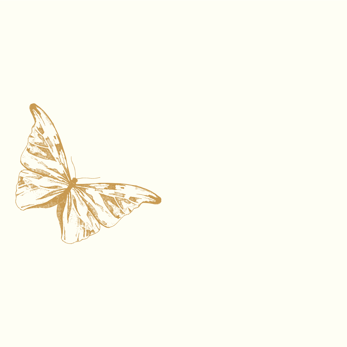 portfolio_butterfly.jpg