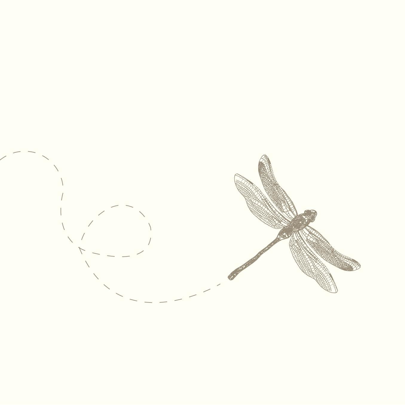 portfolio_dragonfly.jpg