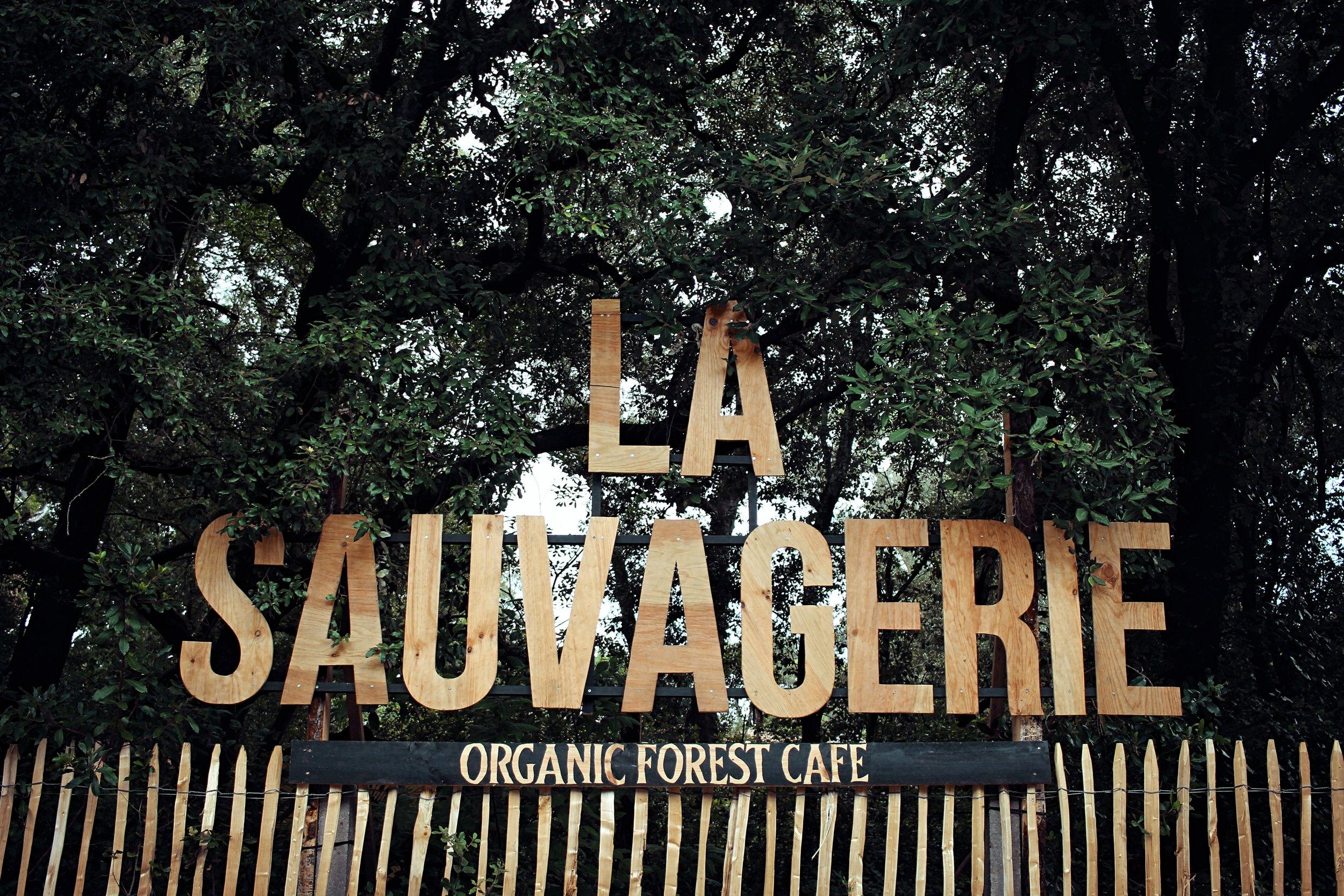 SAUVAGERIE1.jpg