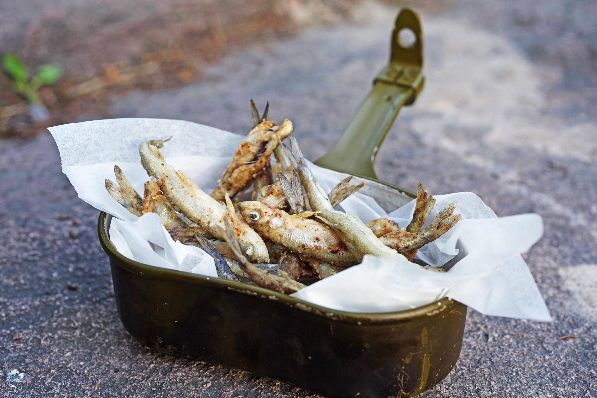 Krøkle - En uke hvert år fylles vassdragene øst for Mjøsa med en delikatesse få har hørt om og enda færre har smakt.