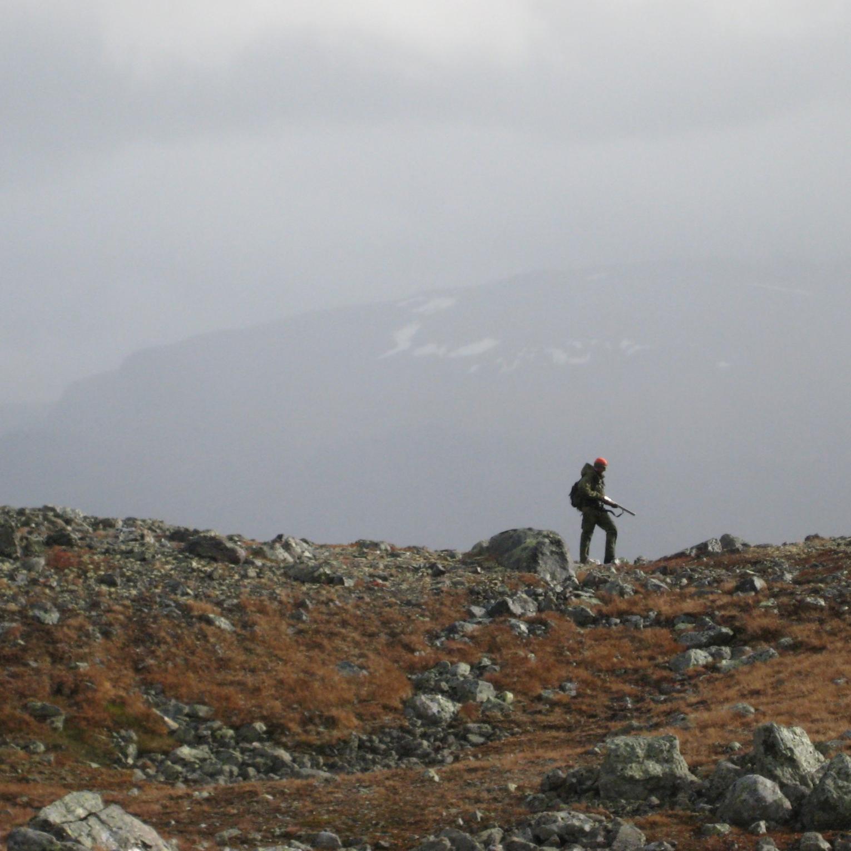 Den store bomturen - Om kunsten å gå i fjellet uten å fange fugl.