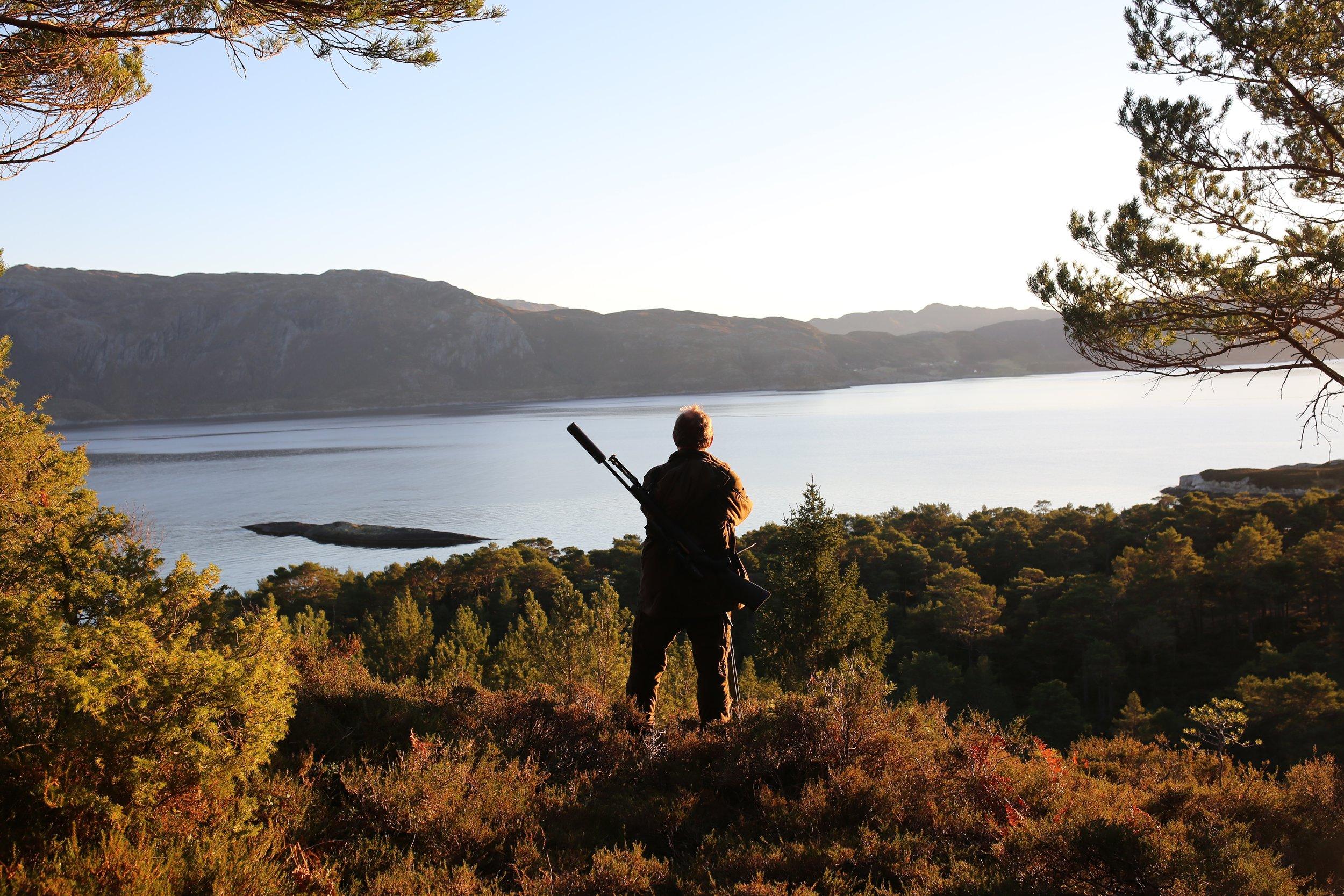Hjortelandet - Svanøy må være et av de vakreste stedene å felle sin første hjort
