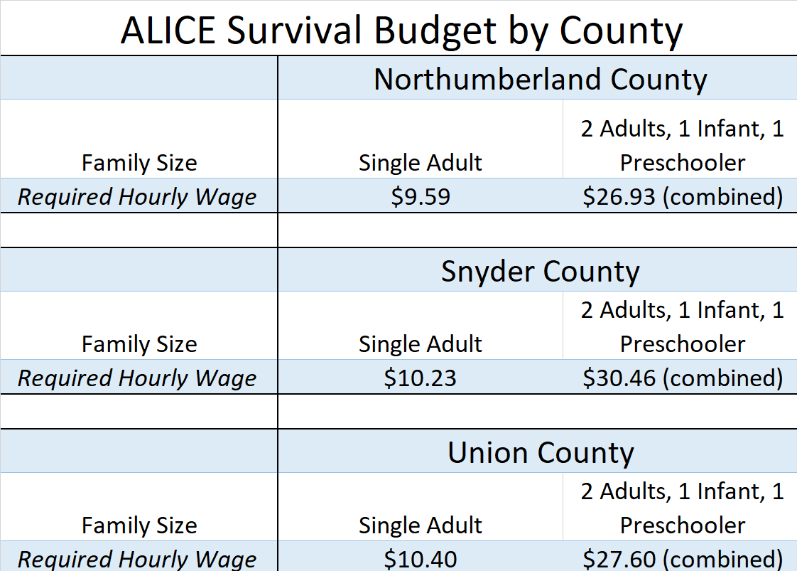 alice survival budget by county.png