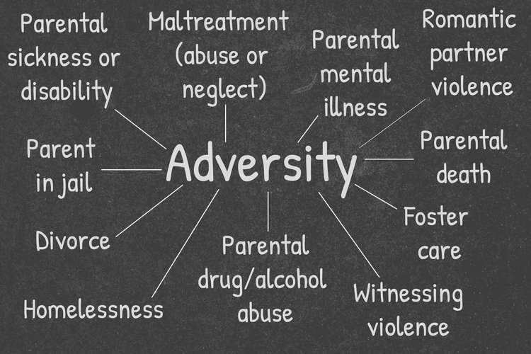 "These are some of the experiences that are often referred to as ""adversity"" or ""stressful life events."" This is, of course, not an exhaustive list!"