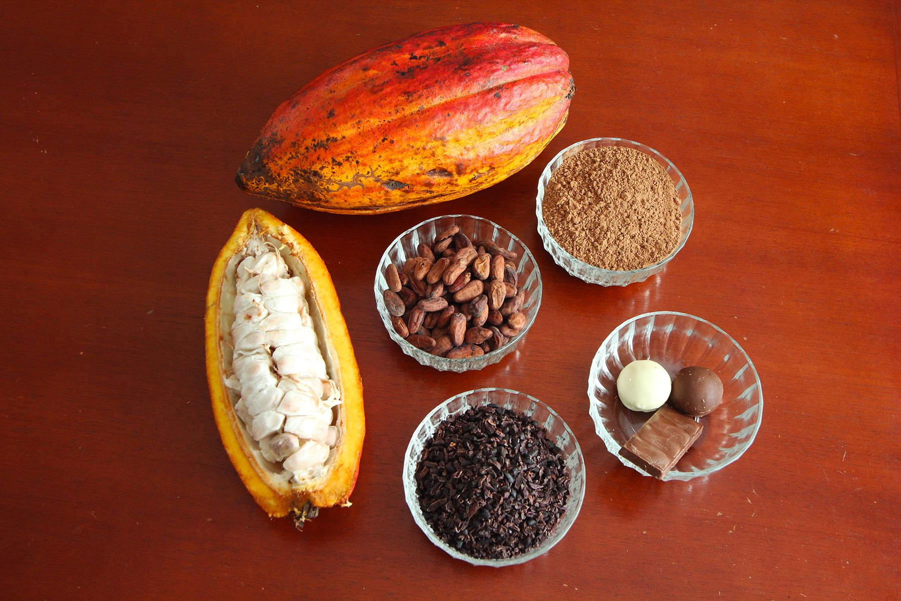 Ultimate-Things-To-Do-St-Lucia-Watch-Cocoa-Pods-Become-Chocolate-Bars-02.jpg