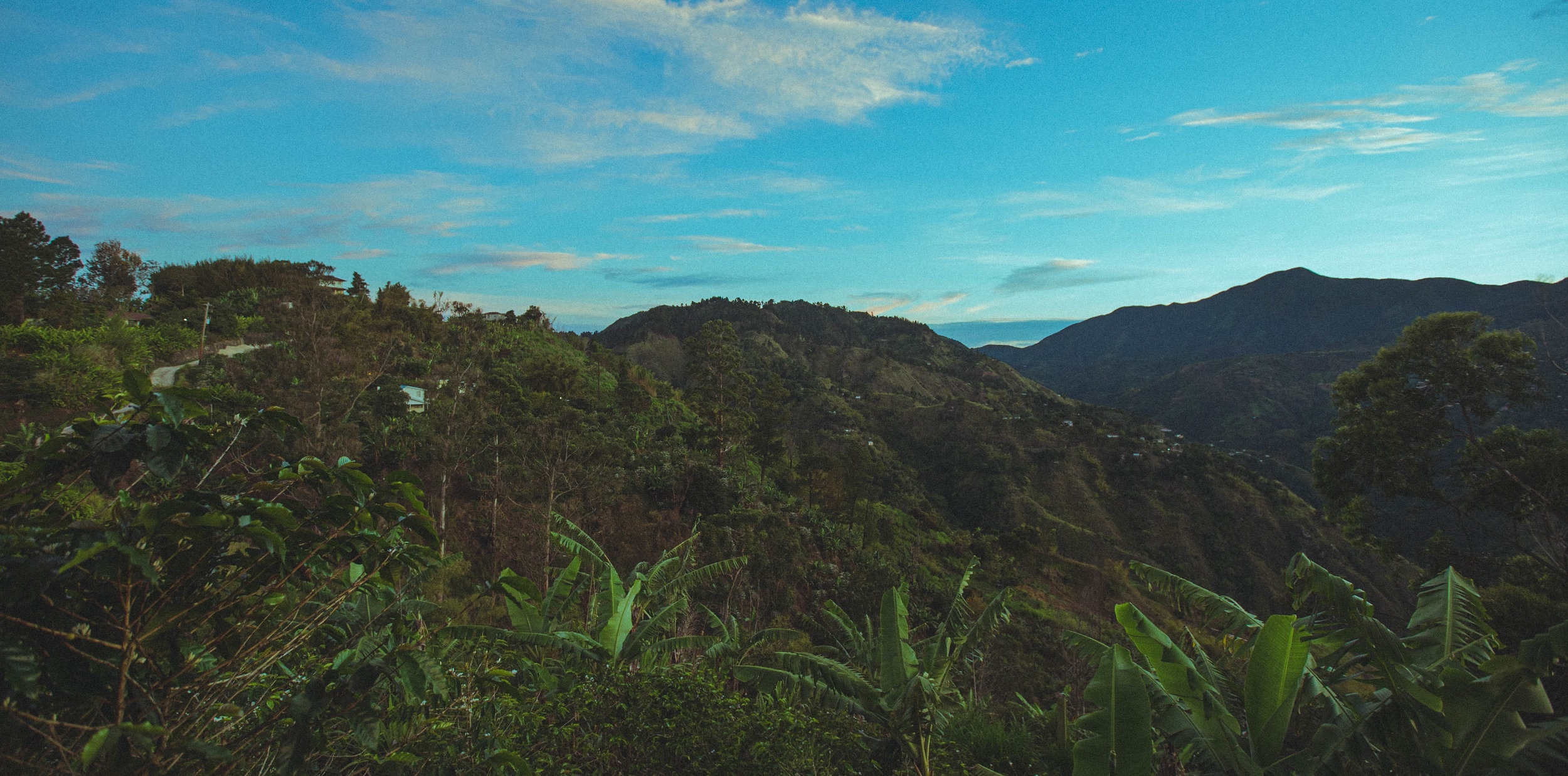 blue-ridge-jamaica.jpg