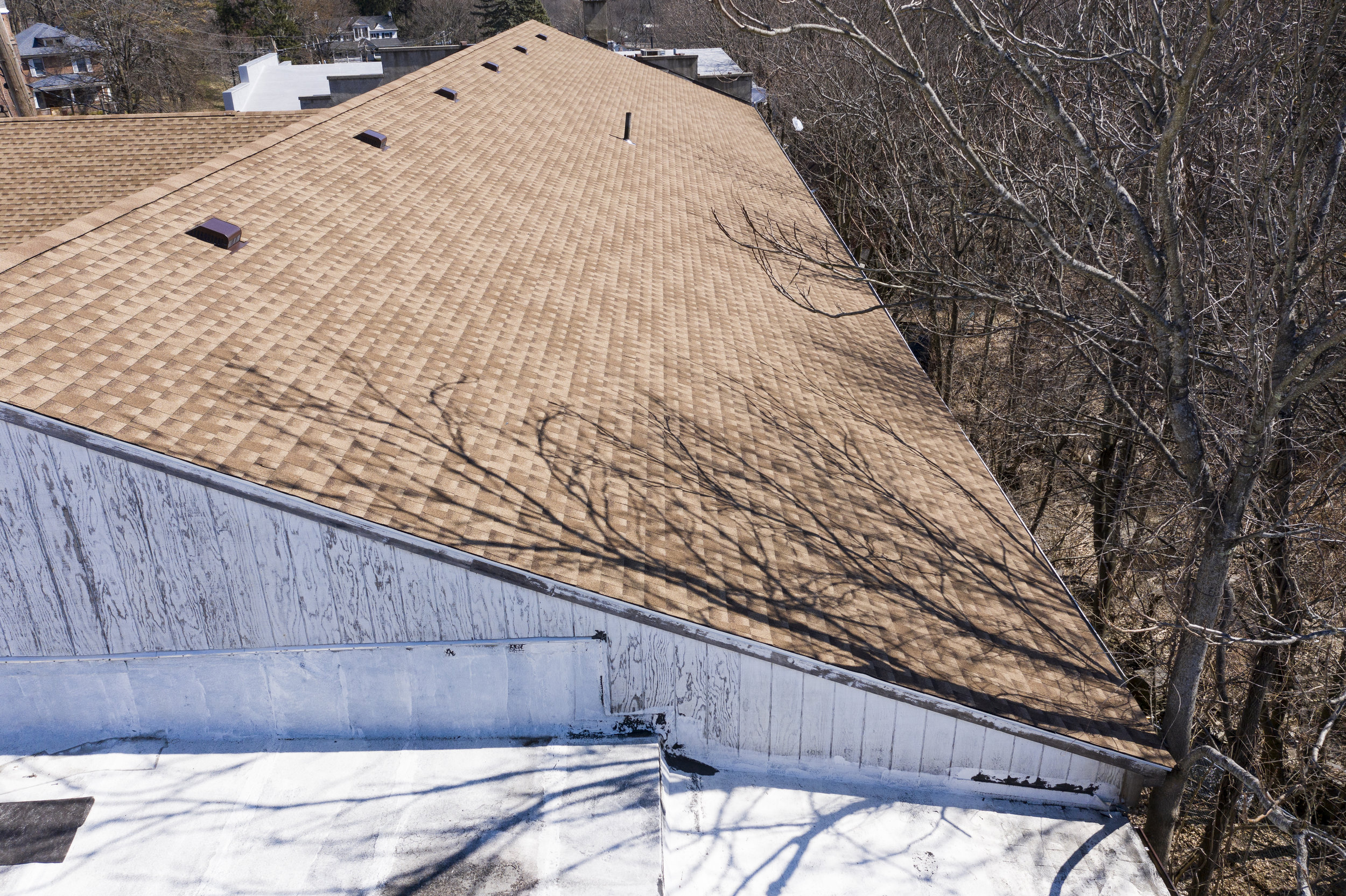 - Code violation: trees in contact with roof edge and gutters