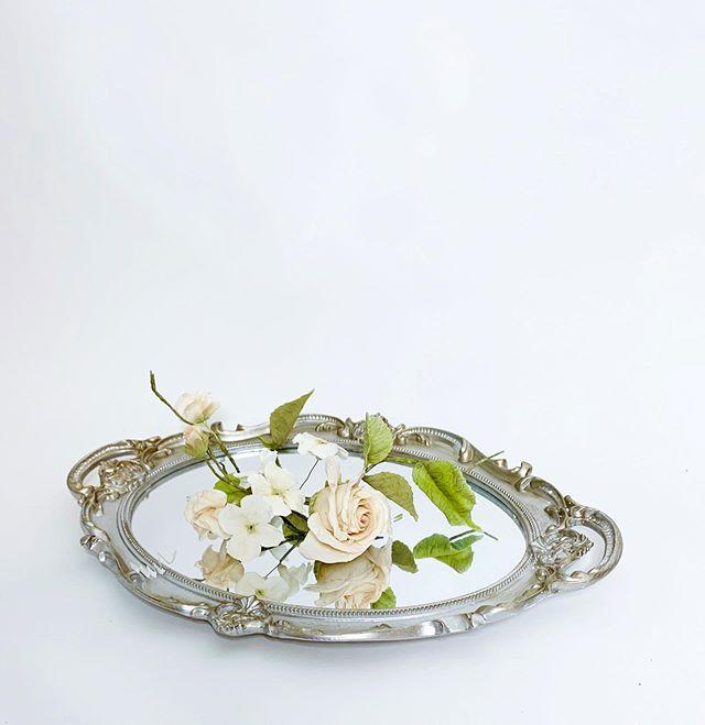 je vois la vie en rose ✨ . . . . . . . . . . #sugarrose #lavieenrose #weddingcake #cakeart #weddingsofig #brides #weddingplanning #seattlebrides #seattlecakes #seattleweddings #weddingshow #washingtonweddings #pnwweddings #pnwcake #cakedesign #cakedesigner #portlandweddings #vancouverweddings #chelanweddings #cakeinspo #cakespo #weddinginspo #moderncakes #moderncakedesign #seattlebride #caketasting #cake #sugarflowers #sugarflorals