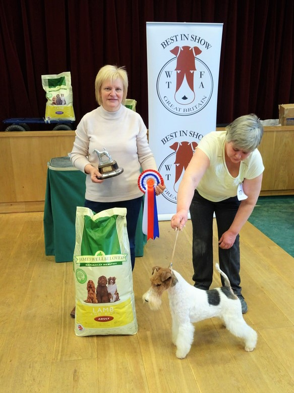 BEST IN SHOW - BROCOLITIA STAND TO REASON