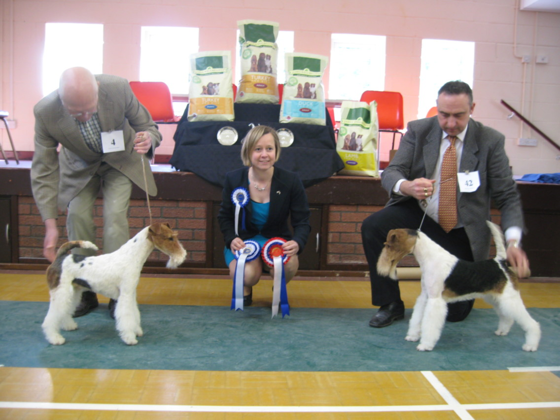 BEST IN SHOW (right) Nethertonion Optimist & RBIS Tyquin Majestic Gem