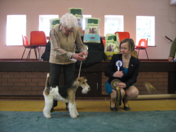 BEST VETERAN IN SHOW - Aman Just Caitlin At Sarabel