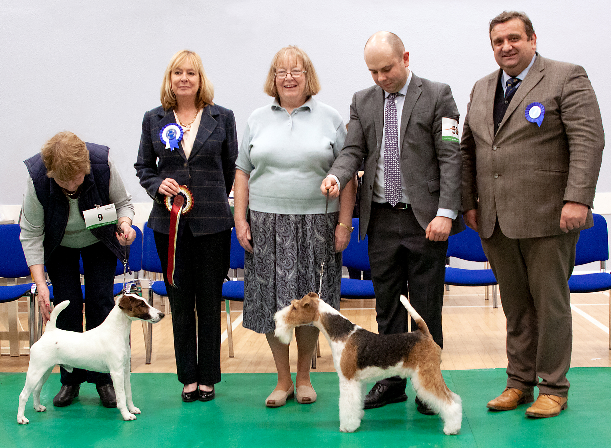 Best In Show, Ch Oaxaca Del Boy with Roxway (left) & RBIS, Ch Blackdale Dignitary (right)