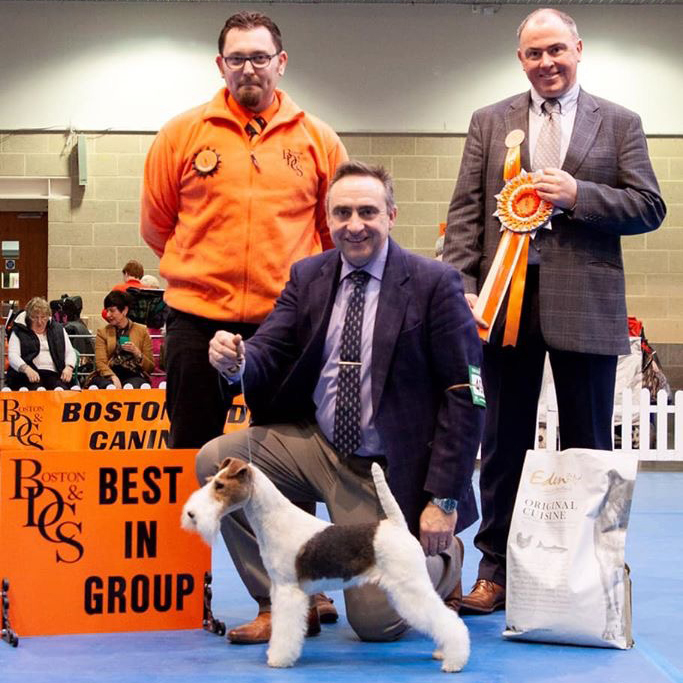 G1 - with handler Andrew Westwood and group judge richard Allen