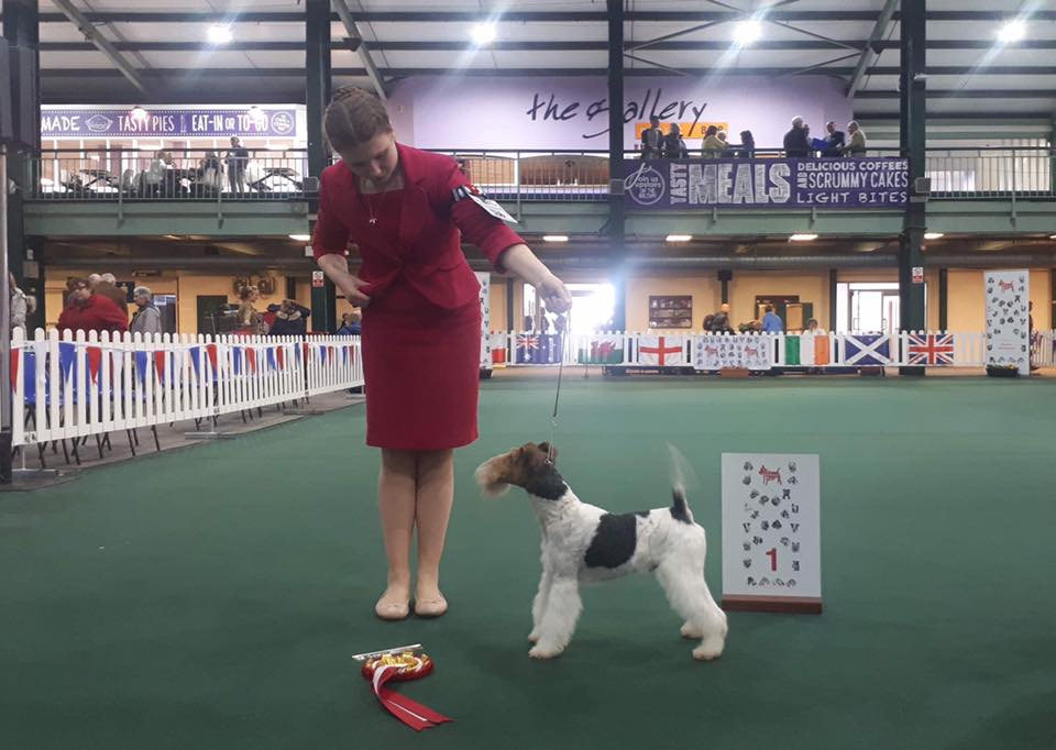 Poppy Wynter with Robelroy Many Dreams At Furlongfox winning Best Special Beginner In Show