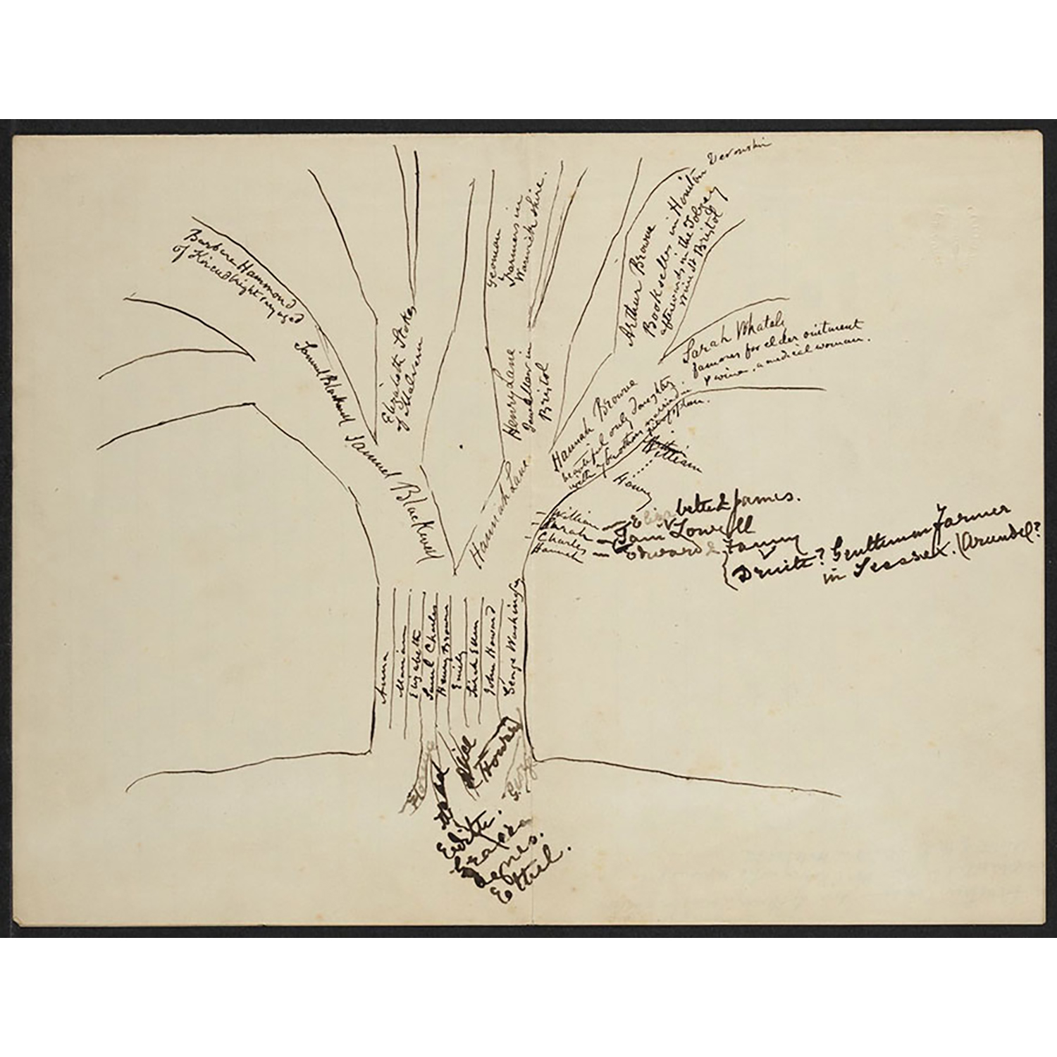 hand-drawn-picture-of-blackwell-family-tree_courtesy-of-schlesinger-library_900px.jpg