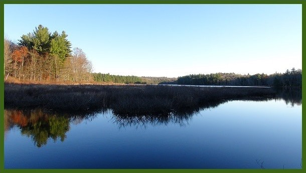 View from my home on Norcross Pond