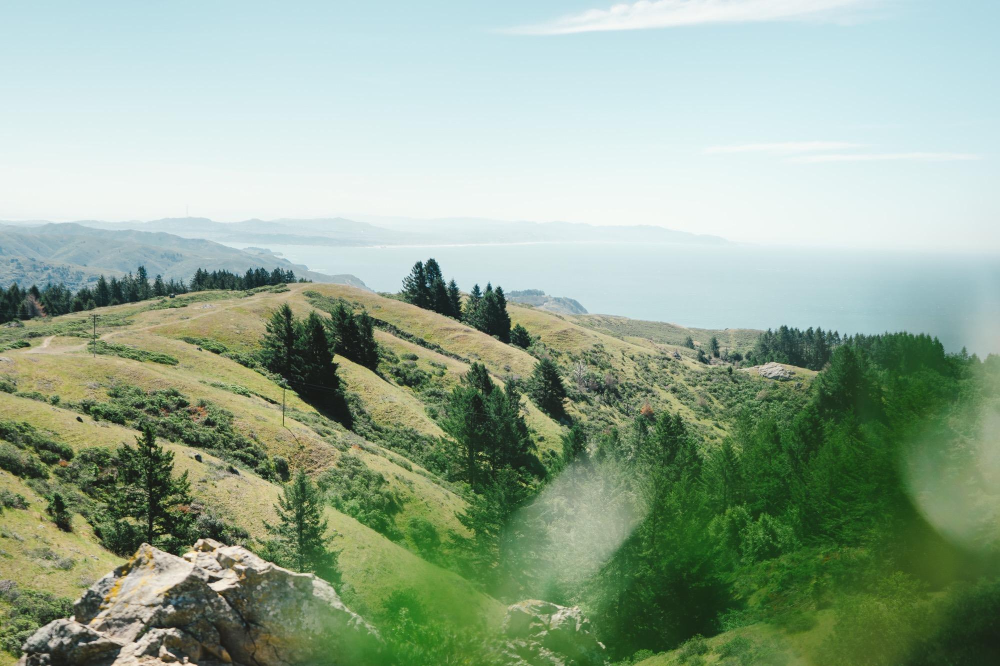 Juniper-Ridge-Wilderness-Perfume_Joel-Baer_118of1326 copy.jpg