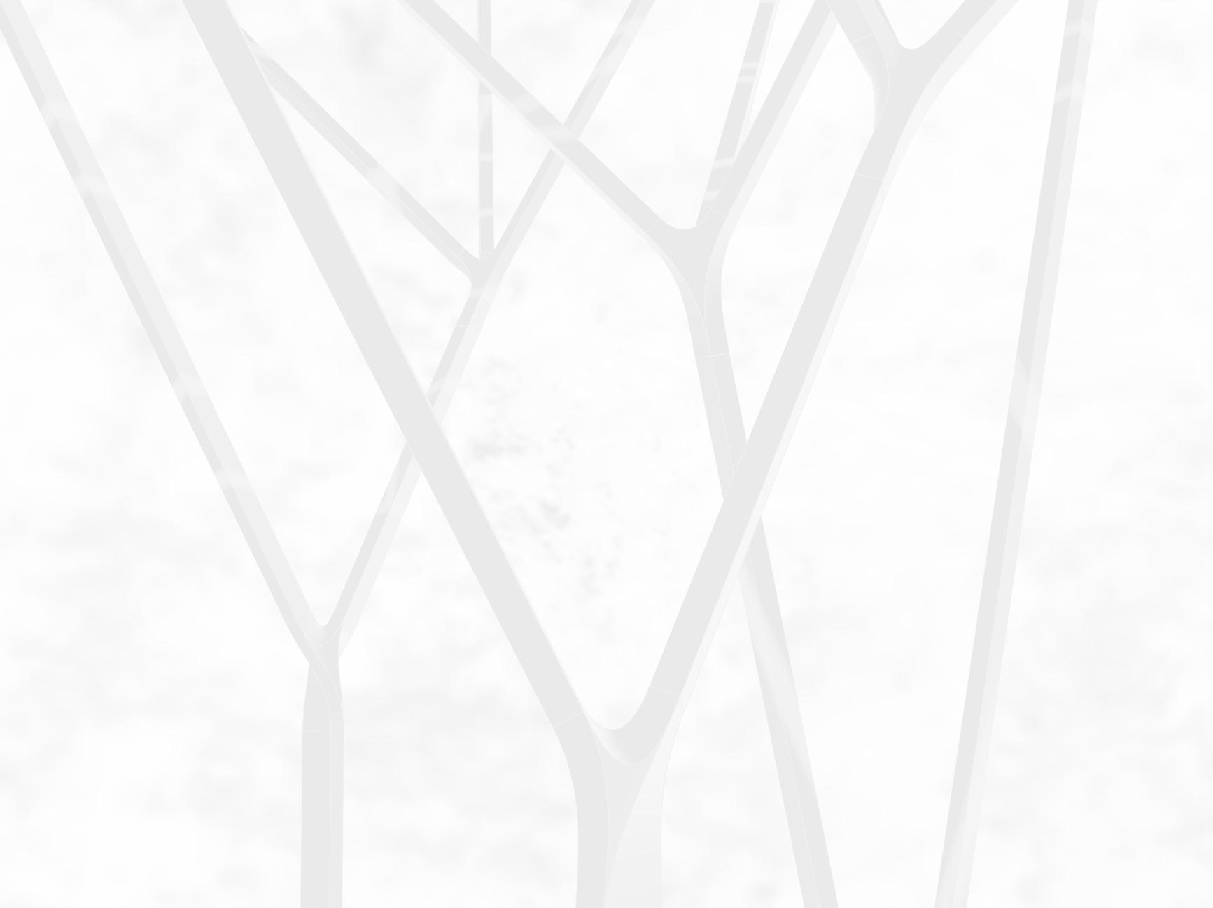 Branches_light invert.jpg