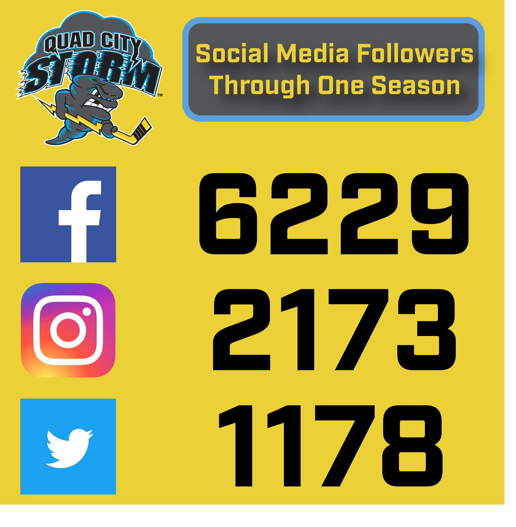 social stats graphic.png