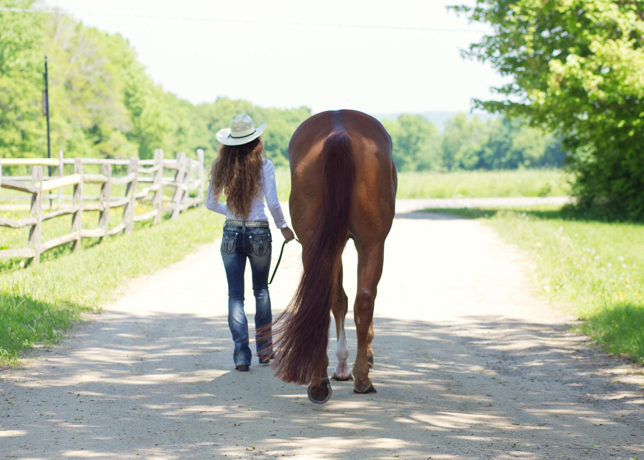 Senior Girl with Horse | Kelly Rhoades Photography