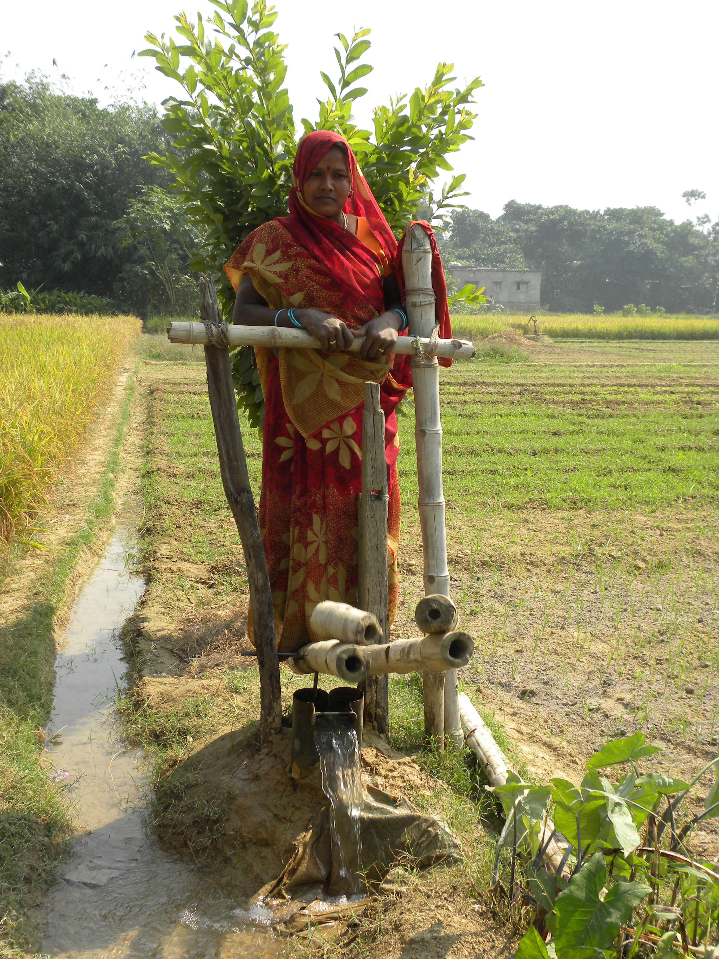 Treadle pumps have become an easy no-cost solution for irrigating fields.