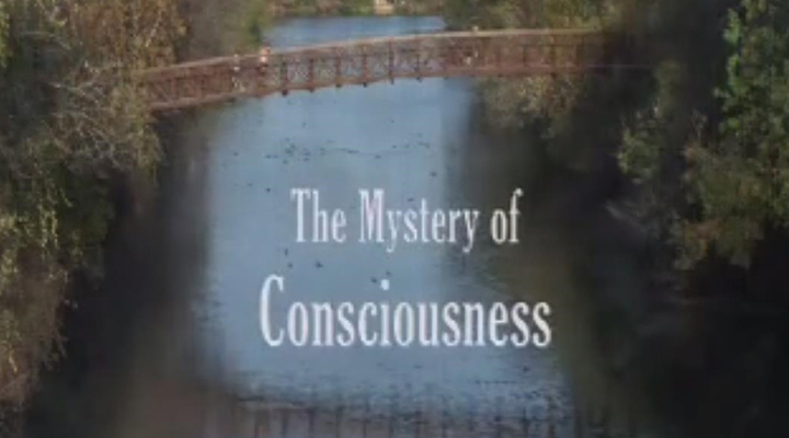 The Mystery of Consciousness - The Mystery of Consciousness (2010, 26-minutes), is a documentary film funded by the Mind Science Foundation.