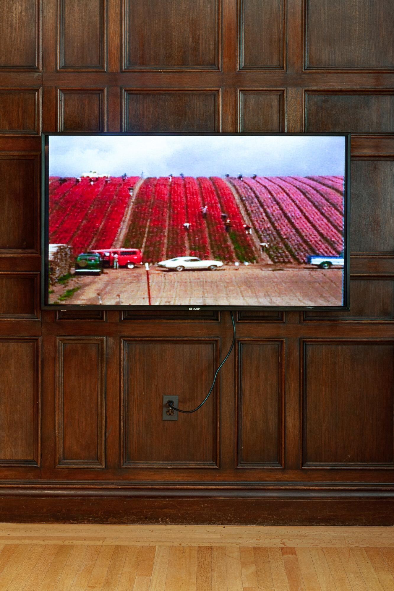 Installation view:  Martha Rosler: Passionate Signals , Neubauer Collegium for Culture and Society, University of Chicago, September 17, 2019 - January 31, 2020. Photo: Robert Heishman.