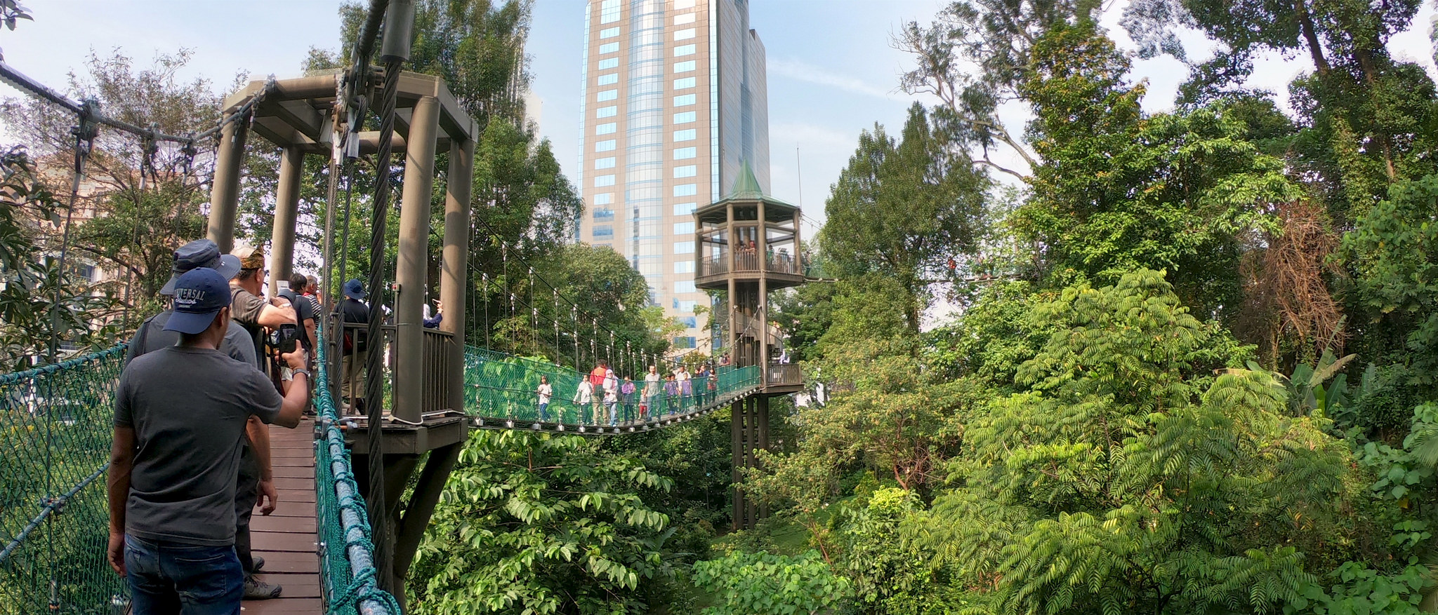 Finally arriving at the canopy walk