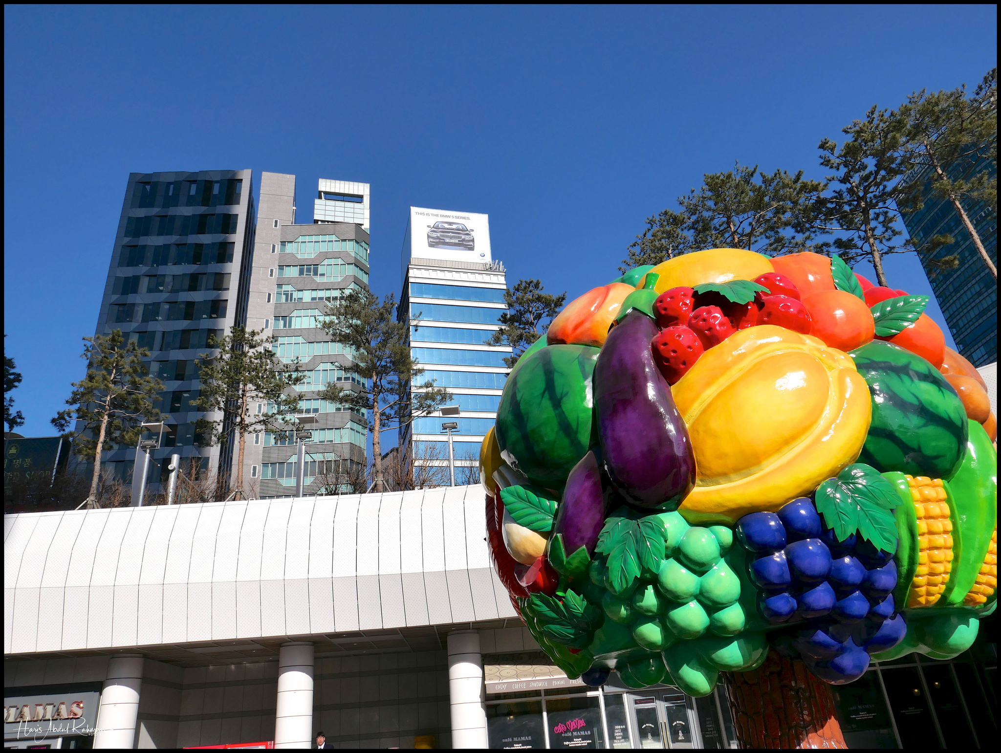The strange but striking vegetable tree near the Metro station at the hotel