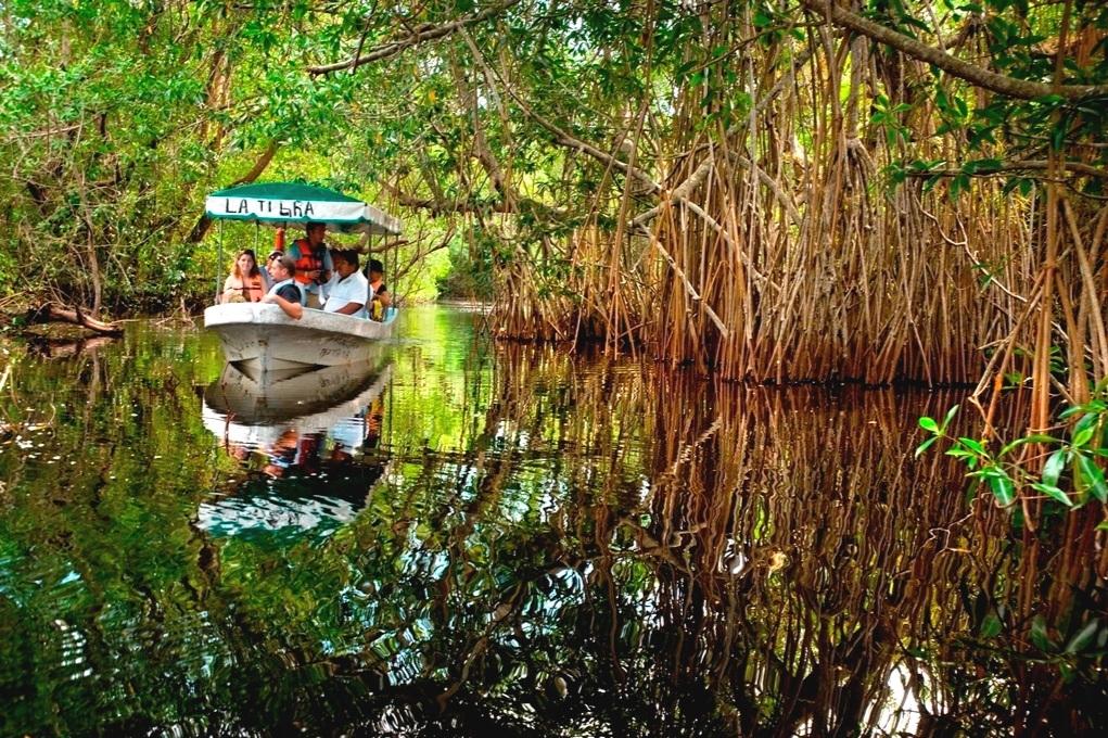 Pantanos de Centla - Reserva de la Biósfera