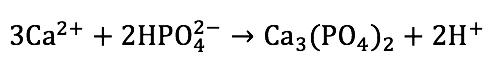 En esta reacción se forma un precipitado de fosfato de calcio y se liberan dos protones.