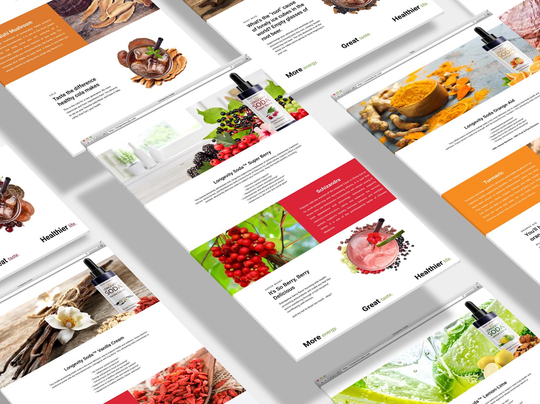 webdesign-mockup-wasilow.jpg