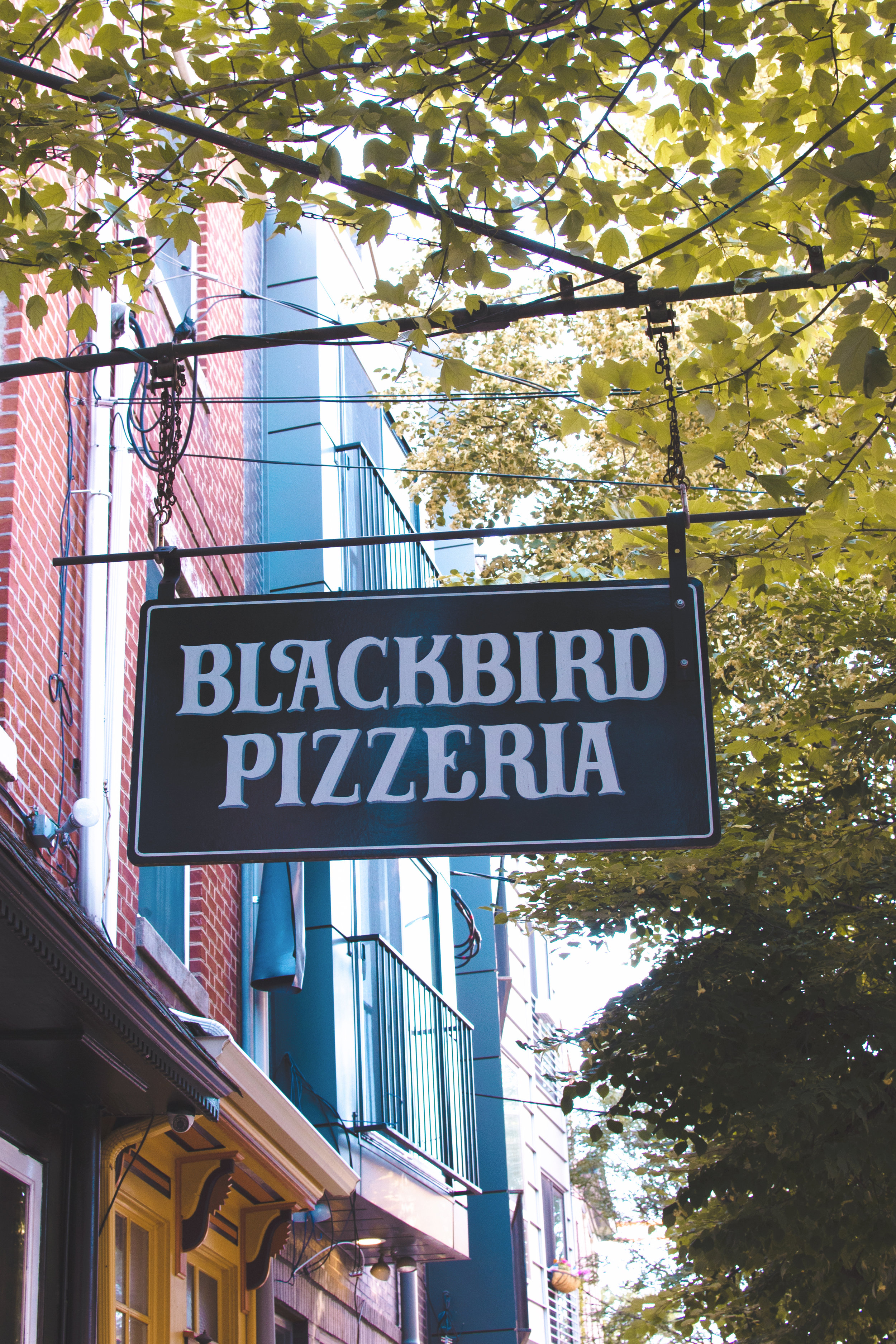 Blackbird-Pizzeria-Philadelphia-Vegan.jpg
