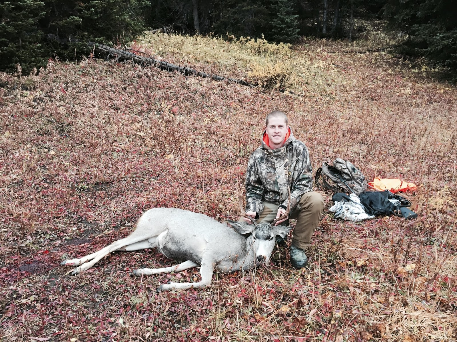 Field Staffer Drew Tvrdik - October, 2016  Montana, Rifle