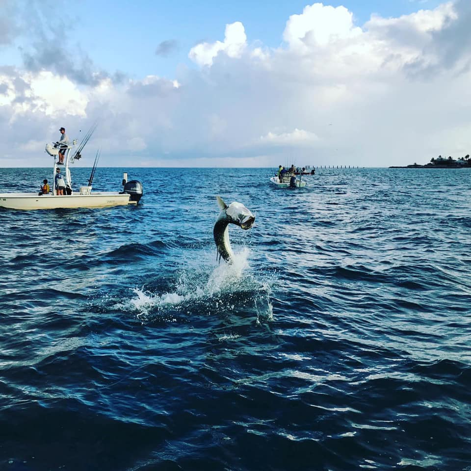 Florida Tarpon fishing with Pro Staffer Mark Maggard