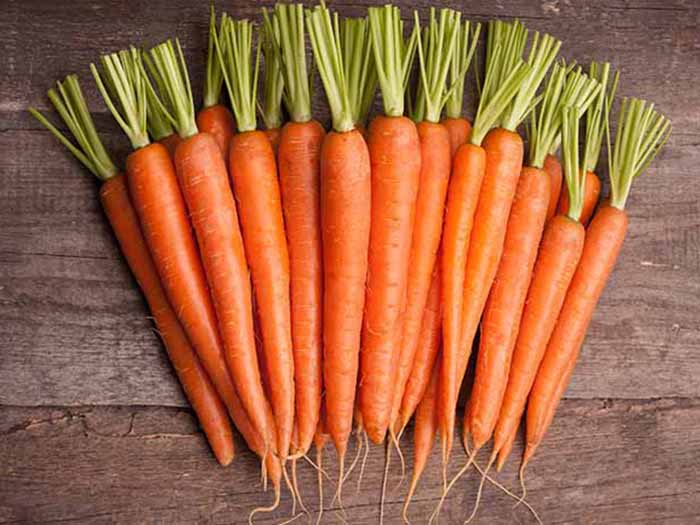 Looking through hundreds of fudge pictures left me feeling hungry and guilty about my diet, so here are some carrots.