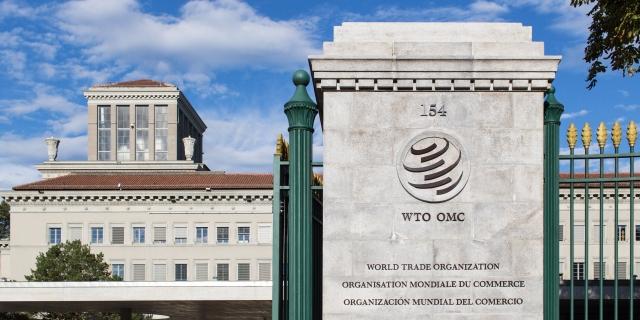 The WTO.jpg
