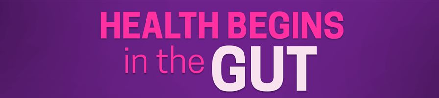 HEALTH BEGINS IN THE GUT_800x800 copy 2.png