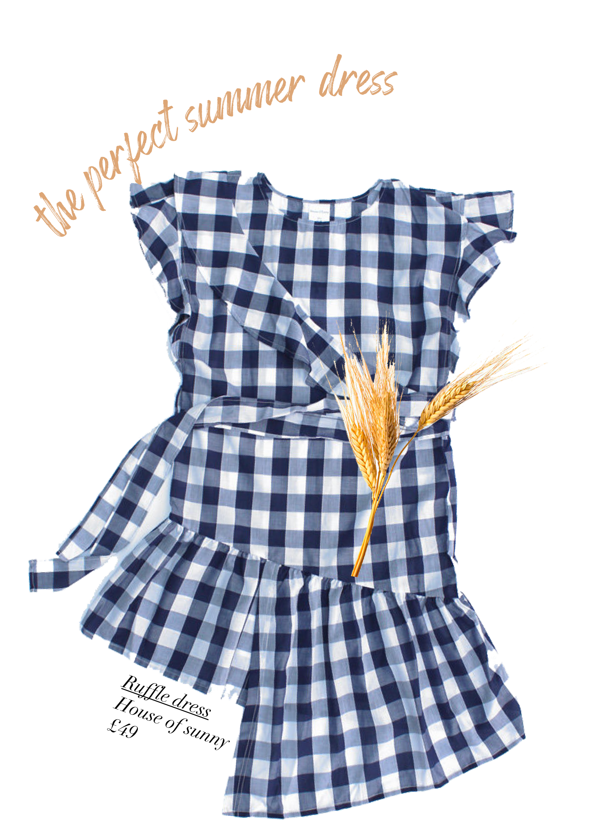 Ruffle Gingham Dress by House of Sunny.png