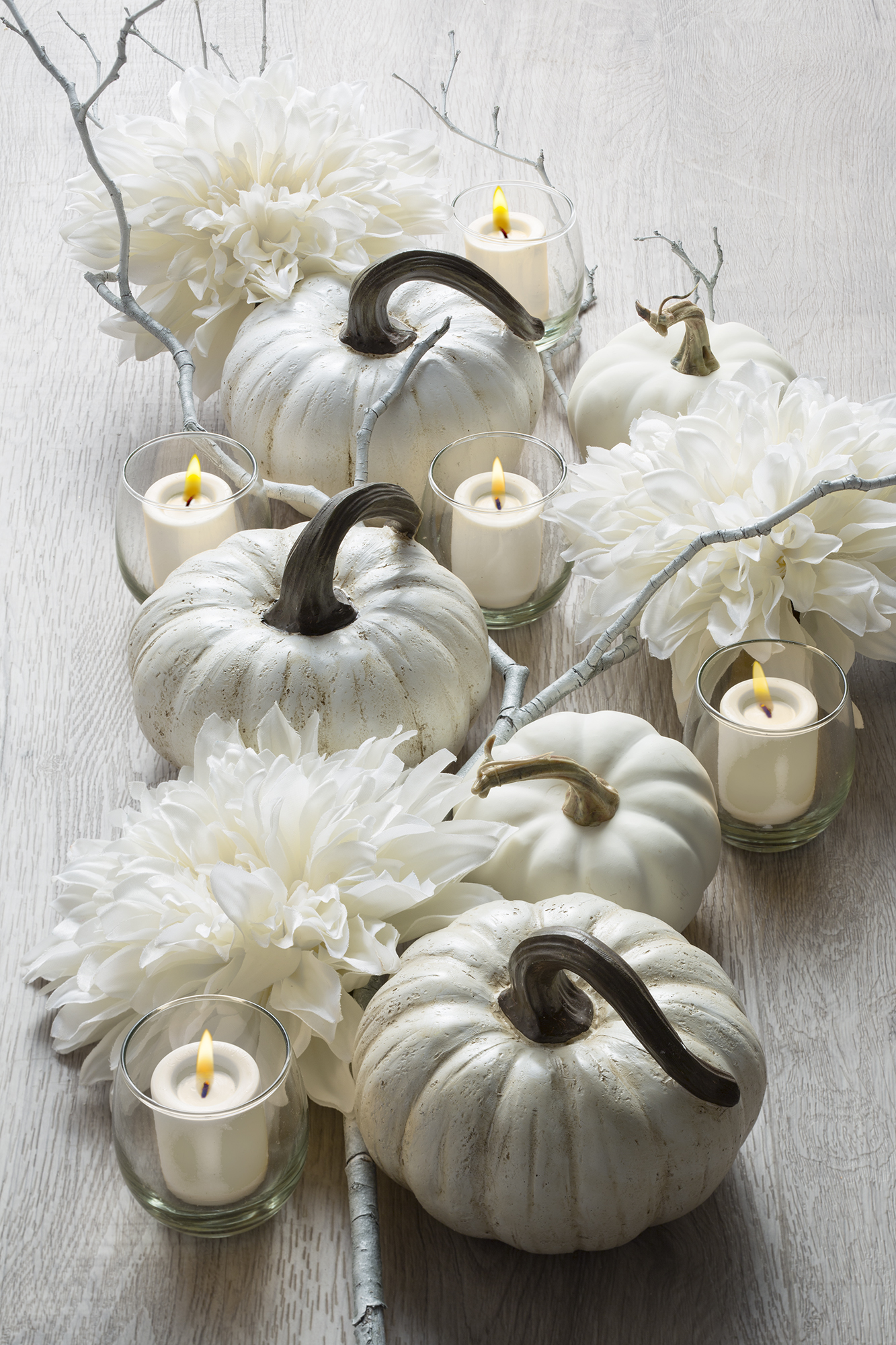 white pumpkins 2.jpg