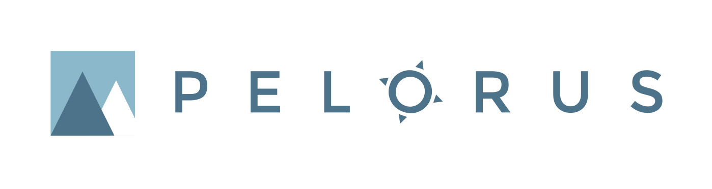 pelorus consulting logo