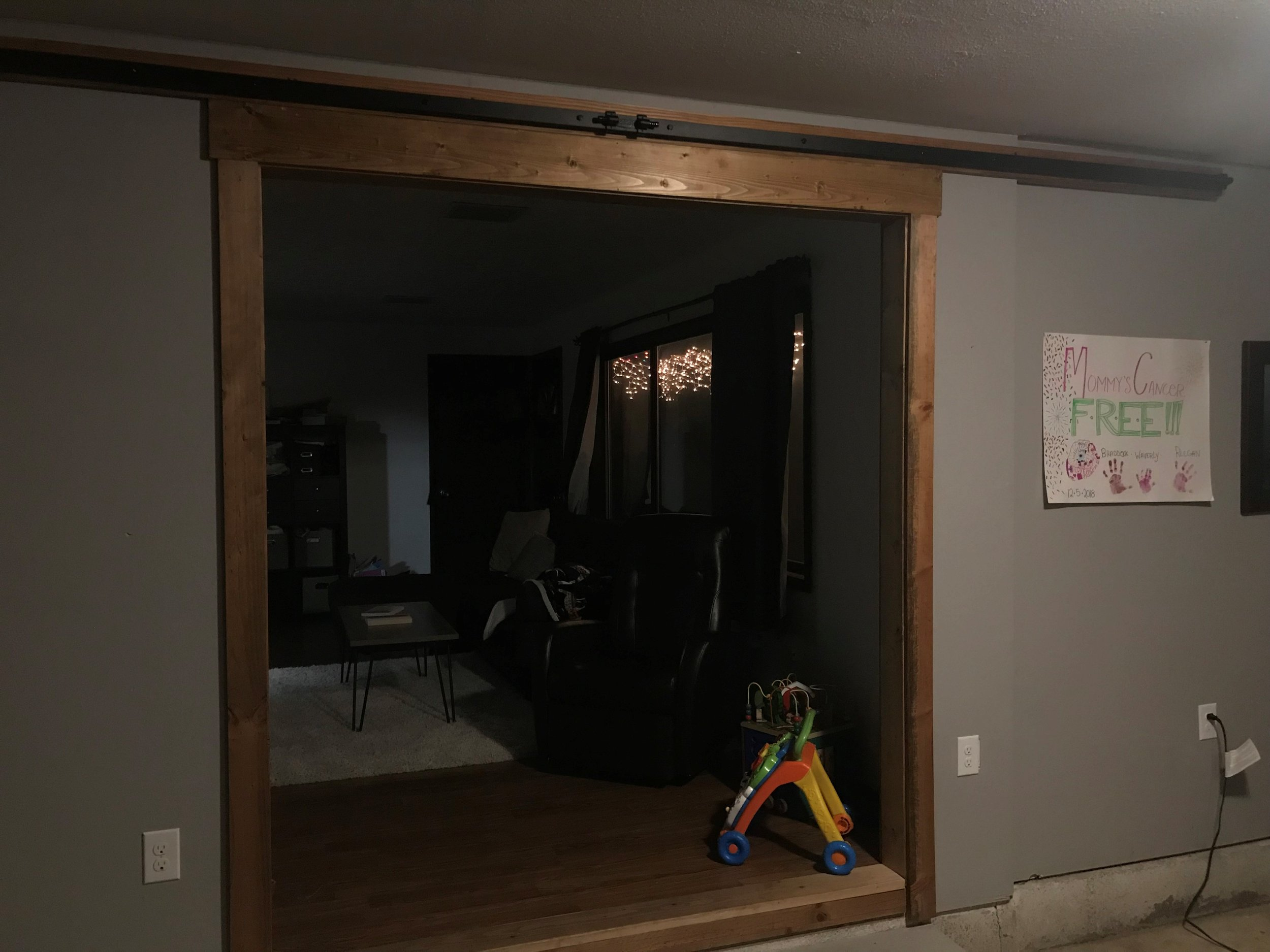 Barn Door 3.jpg