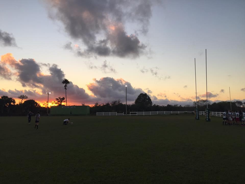 Surge Field 'Sunset.jpg