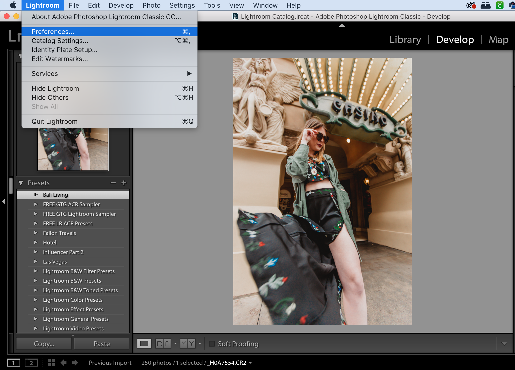 How To Import Lightroom Presets