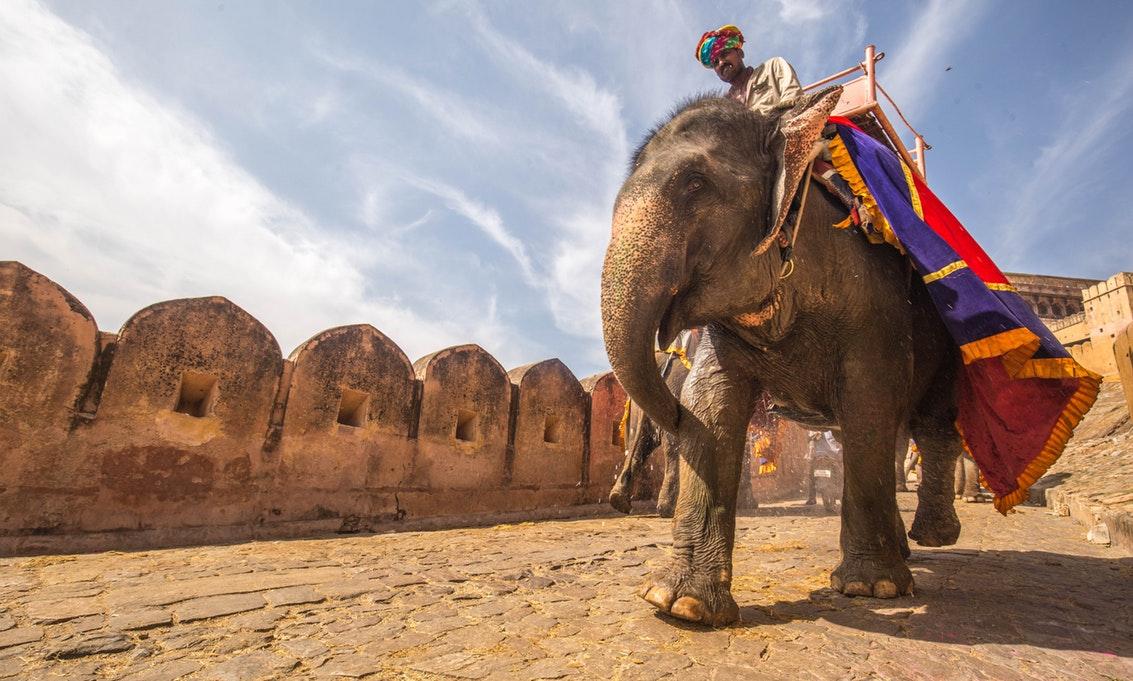 Riding elephant.jpg