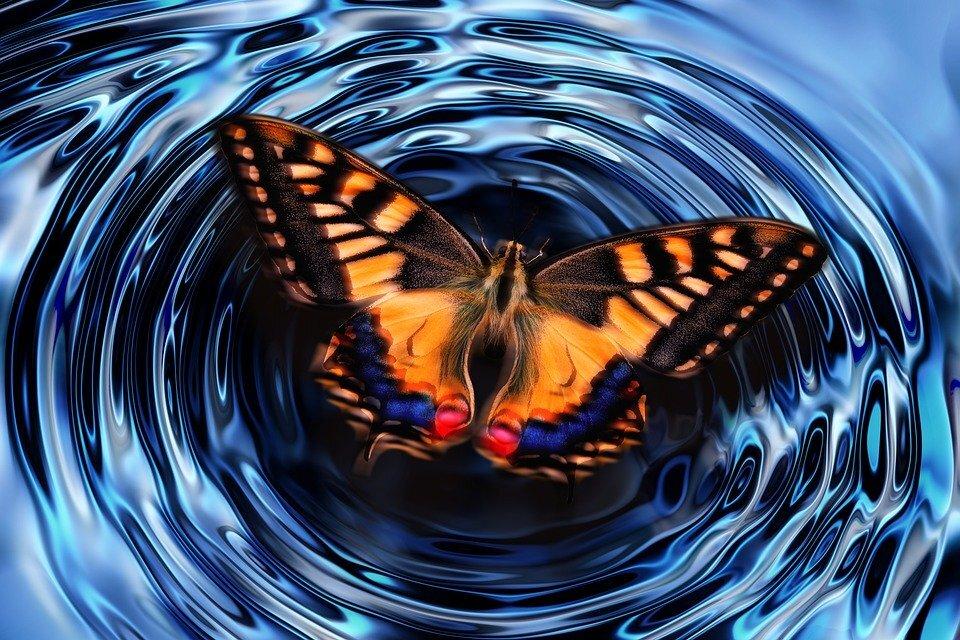 Buttefly effect.jpg