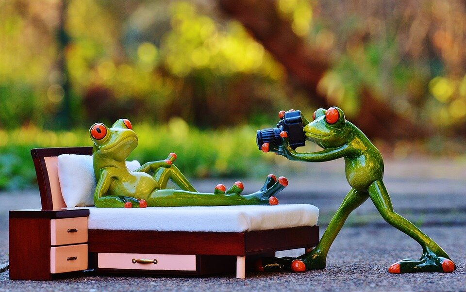 Instead of being boiled, the frog can become a digital storyteller