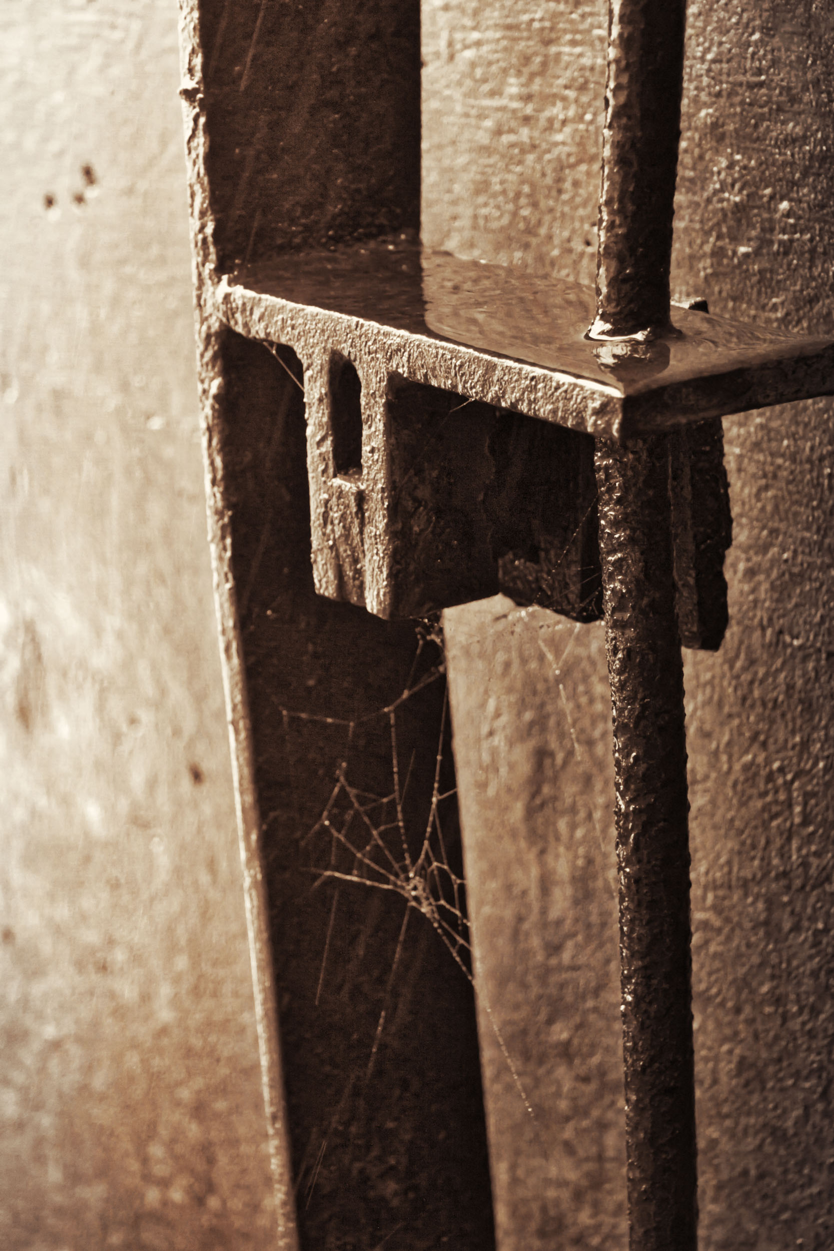 Ana V Ramirez IMG_6518-Edit.jpg