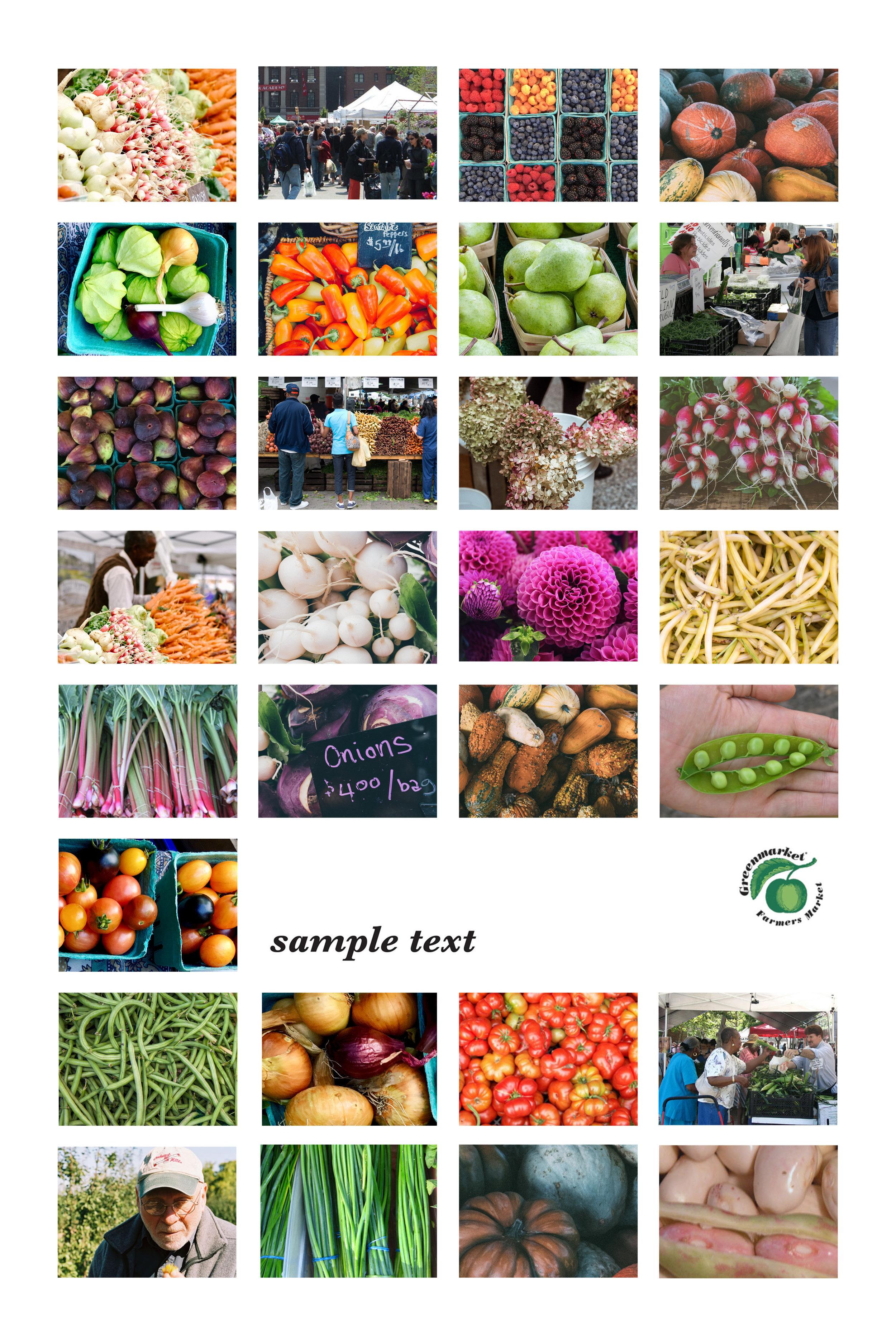 greenmarket redo2.jpg