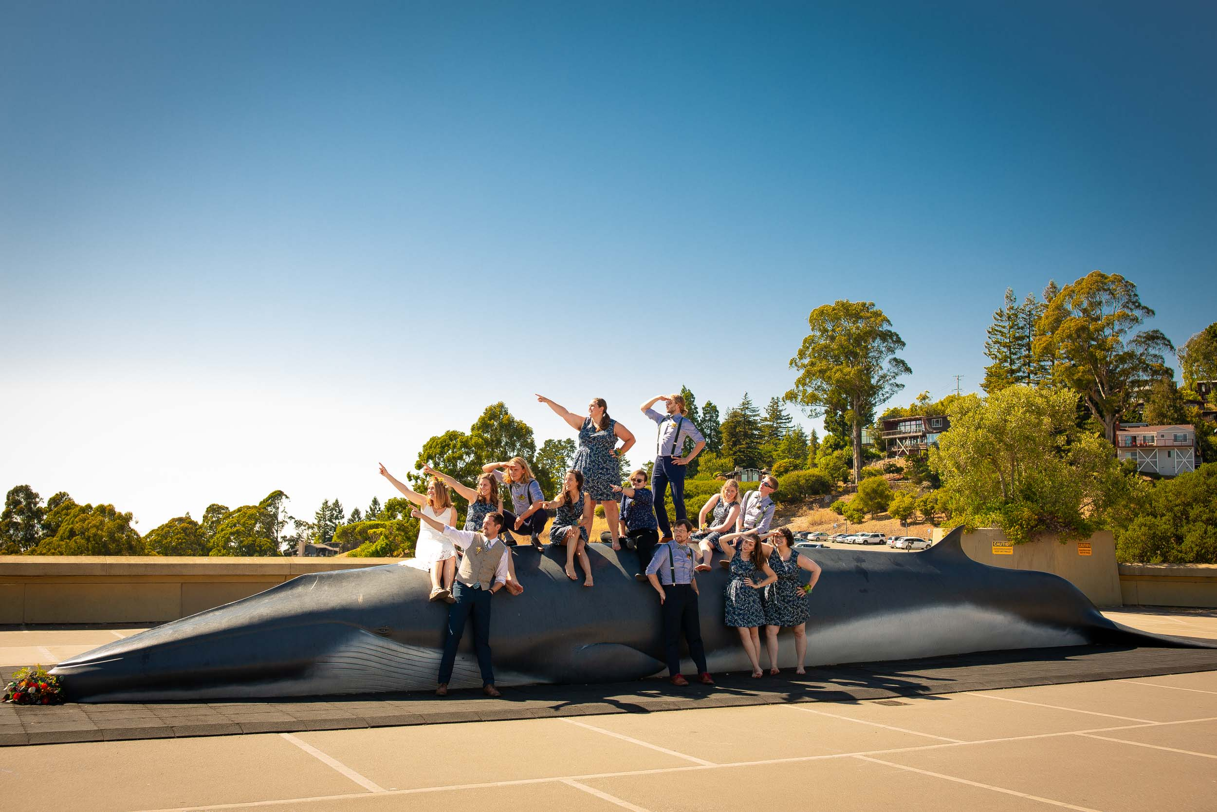 bridal party posing on the whale at Lawrence Berkeley Hall of Science